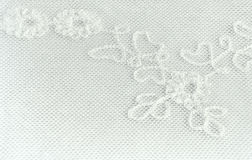 Parte de um fundo floral do laço Imagem de Stock Royalty Free