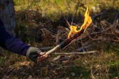 A parte de um homem e a mão com tocha ardem no fundo selvagem da natureza Fotografia de Stock