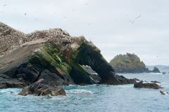 Parte de un refugio de aves en siete islas Imágenes de archivo libres de regalías