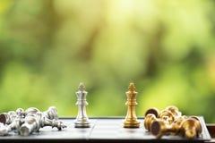 Parte de xadrez Foto de Stock