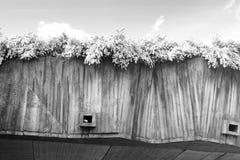 Parte del cemento armato della costruzione e dei fiori Immagini Stock Libere da Diritti