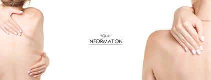 Parte del corpo femminile della parte posteriore del modello stabilito di salute della medicina della mano Immagine Stock Libera da Diritti