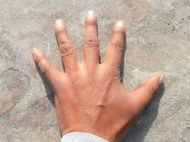 Parte del corpo umana della mano dell'uomo fotografie stock libere da diritti