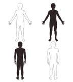 Parte del cuerpo del hombre Foto de archivo