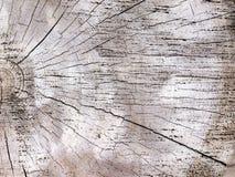 Parte del fondo natural de la madera de madera Foto de archivo libre de regalías
