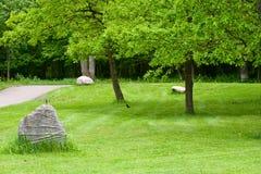 Parte del giardino con una pietra decorativa. Immagini Stock Libere da Diritti