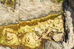 Parte del mar con las piedras y agua cristalina y la parte inferior visible Visión desde arriba Imagenes de archivo