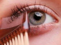Parte del primo piano del dettaglio di trucco dell'occhio del fronte della donna Fotografia Stock Libera da Diritti