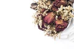 Parte del ramo seco de la flor en el fondo blanco, foco selectivo, Fotos de archivo libres de regalías