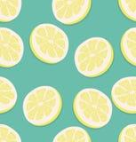 Parte del verano de un modelo del limón Imagenes de archivo