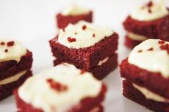 Parte delicada de bolo de chocolate pequeno Imagem de Stock