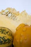 Parte della zucca Immagini Stock
