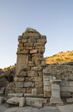 Parte delle rovine di Ephesus e del gatto - un residente locale della città antica. Immagini Stock