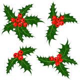 Parte di bacche dell'agrifoglio Vischio - illustrazione di vettore di simbolo di Natale Immagine Stock Libera da Diritti