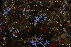 Parte di bei alberi di Natale brillanti Fotografia Stock