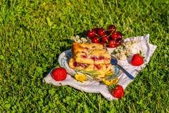 Parte di dolce della ciliegia su un asciugamano con le fragole su erba Immagini Stock Libere da Diritti