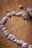 Parte di forma del cuore fatta dei petali rosa-chiaro della ciliegia Fotografia Stock