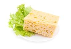 Parte di formaggio e di lattuga Immagine Stock Libera da Diritti
