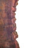 Parte di vecchio legno tagliato della sezione Immagini Stock