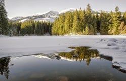 Parte di Vrbicke del lago coperta in ghiaccio Immagine Stock Libera da Diritti