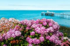 Parte dianteira de mar de Llandudno em Gales norte, Reino Unido Imagens de Stock