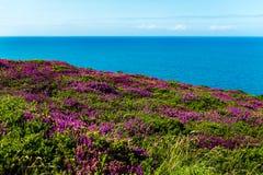 Parte dianteira de mar de Llandudno em Gales norte, Reino Unido Fotos de Stock