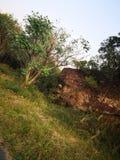 Parte dianteira de pedra de madeira imagens de stock