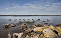 Parte dianteira do lago Ashland Wisconson Imagens de Stock Royalty Free