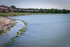 Parte dianteira do lago com condomínios e apartamentos Fotos de Stock Royalty Free