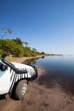 Parte dianteira do rio de Chobe pelo carro Imagem de Stock