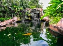 Parte dianteira ou pátio traseiro, jardim formal, cachoeira, verão, água Fotografia de Stock