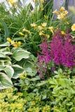 Parte do jardim do quintal Imagem de Stock