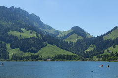 Parte do lago preto Fotos de Stock Royalty Free
