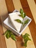 Parte do triângulo de queijo Fotos de Stock Royalty Free