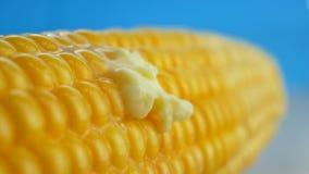 Parte fresca saboroso de manteiga que derrete no milho fresco amarelo maduro em espigas video estoque