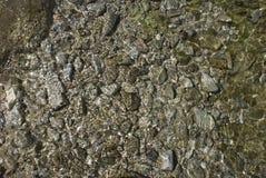 Parte inferior de mar Imágenes de archivo libres de regalías