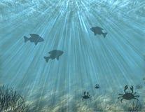 Parte inferior de oceano ilustração royalty free