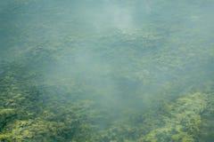 Parte inferior de río Imagenes de archivo
