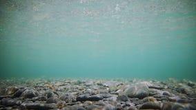 Parte inferior de río clara subacuática