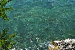 Parte inferior do mar Imagens de Stock