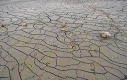 Parte inferiore dell'secco di sulla base di lago Immagine Stock Libera da Diritti