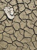 Parte inferiore di lago Droughty Immagine Stock Libera da Diritti