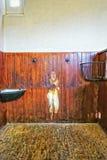 Parte interna della stalla nella Camera dell'estremità di Audley in Essex Fotografia Stock