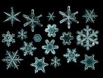 Parte macro do floco de neve de cristal natural de gelo Imagens de Stock Royalty Free