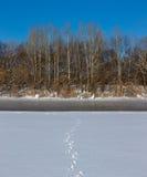 Parte no congelada del río Imagen de archivo libre de regalías