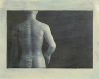 Parte posterior de la acupuntura Foto de archivo libre de regalías