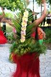 Parte posterior del bailarín exótico Fotografía de archivo libre de regalías