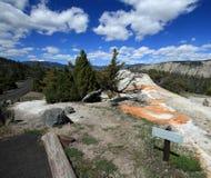 Parte posterior del elefante blanco en la terraza superior de Mammoth Hot Springs en el parque nacional de Yellowstone en Wyoming fotos de archivo libres de regalías