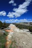 Parte posterior del elefante blanco en la terraza superior de Mammoth Hot Springs en el parque nacional de Yellowstone en Wyoming imagen de archivo
