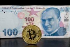 Parte posterior del solo bitcoin derecho de oro y de la lira turca encendido Fotos de archivo